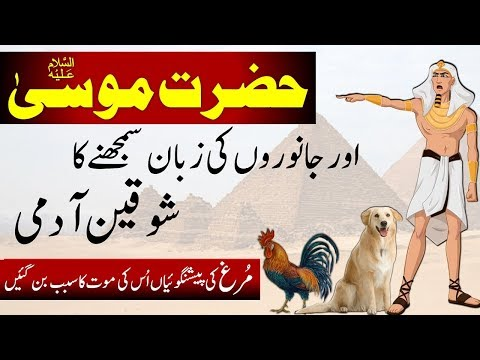 Download Hazrat Musa AS || Story of Prophet Mosa || Moses In