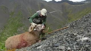 Snow Sheep Hunt 2017 Yakutia. Mountain hunt.