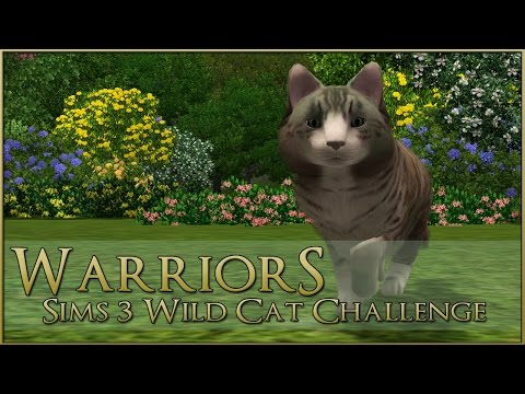 A Forest-Touched Wild Cat 🌿 Warrior Cats Sims 3 Legacy - Episode #1
