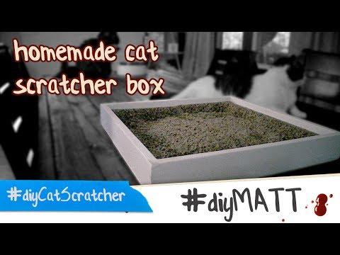 diy homemade cat scratch box
