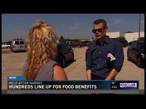 Thousands line up for disaster food stamps