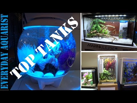 Top 5 Cheap Budget Small & Nano Aquariums