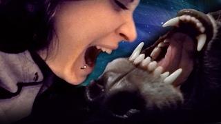 Love Nipping & Kissses w/ a Wolfdog