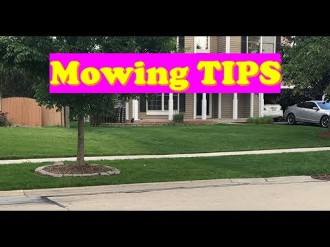 Best Grass Mowing Tips | Lawn Mowing Secrets for your Grass (LAWN CARE)