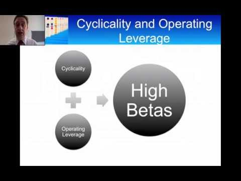 The Determinants of Beta: Cyclicality, Operating Leverage and Financial Leverage