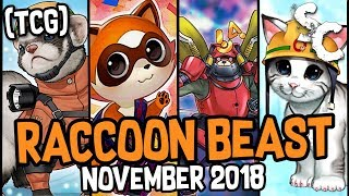 Baby Raccoons Greater Than Mek-Knight Invoked  - PakVim net