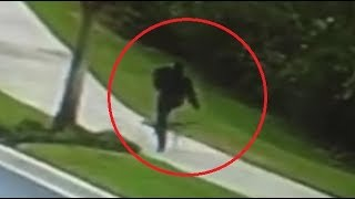 Download Man knocks out a Coyote!!! Video