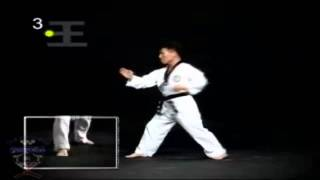 Poomse 3 Taegeuk Sam Jang [En Español][HD]