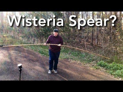 Wisteria Spear - Cutting the Vine