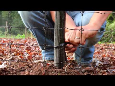 Deer Fence Installation