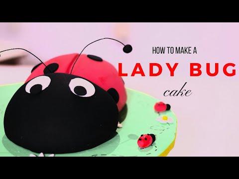 How to Make a LadyBug Cake