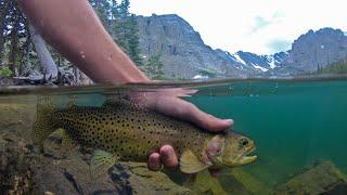 Fly Fishing in Beautiful Alpine Lake!