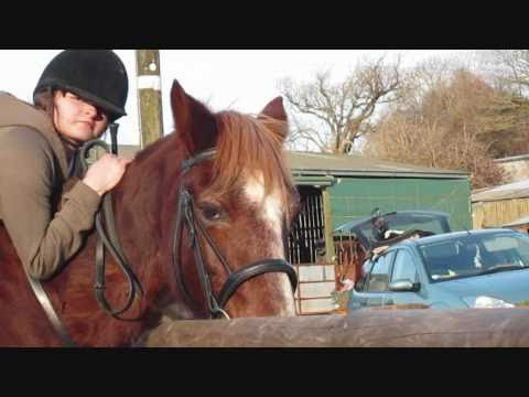Xxx Mp4 A Girl And Her Horse Xx 3gp Sex