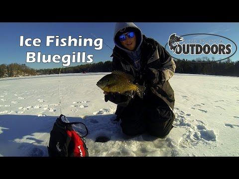 Ice Fishing Bluegills