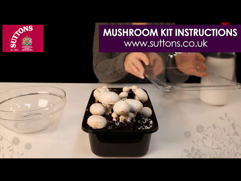 Suttons Mushroom Kit Instructions