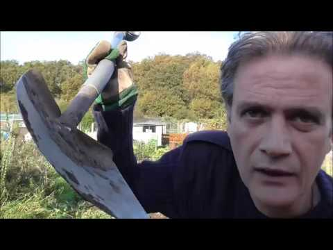Collecting Leaf Mould - Allotment Grow How