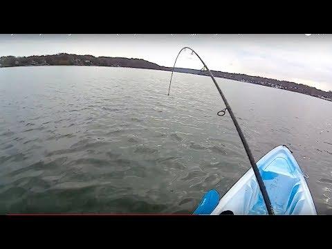 My Last Kayak outing of the Season(2017) - Blackfish(Tautog) - Long Island, NY