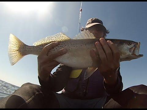 Catch Big Trout
