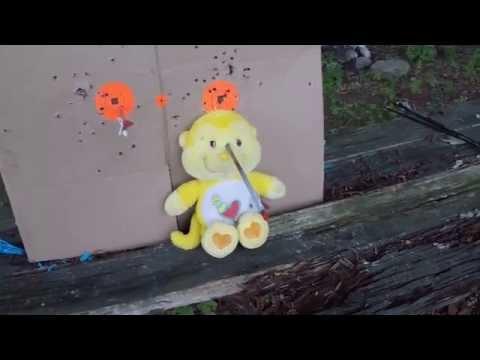 Care Bear Head Shot