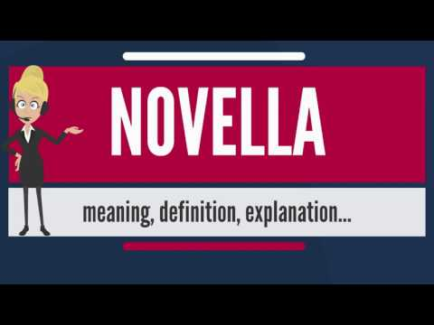 What is NOVELLA? What does NOVELLA mean? NOVELLA meaning, definition & explanation