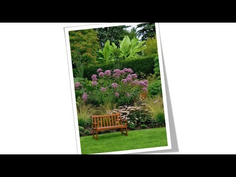 Gardens  - Garden Ideas  - Garden Designs