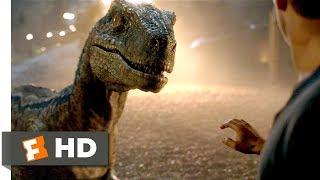 Download Jurassic World: Fallen Kingdom (2018) - Goodbye, Blue Scene (9/10) | Movieclips Video