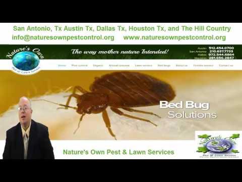 Pest Control Houston 281-656-2847