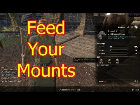 Elder Scrolls Online |  Don't Forget to Feed your Horses Daily