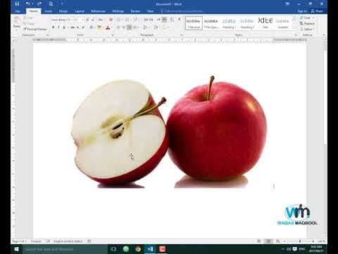 Picture formatting in MS Word Part 1