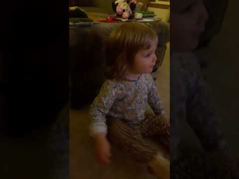 Baby loves Kitty video