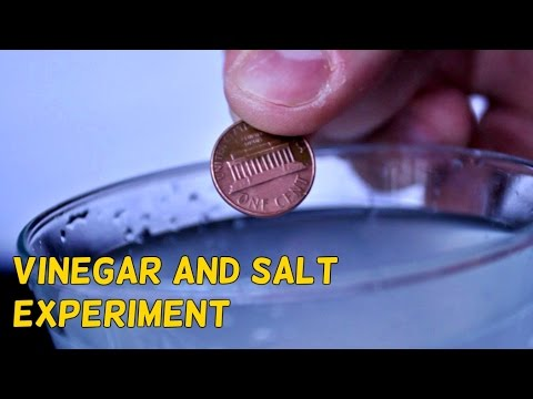 Vinegar and Salt Experiment