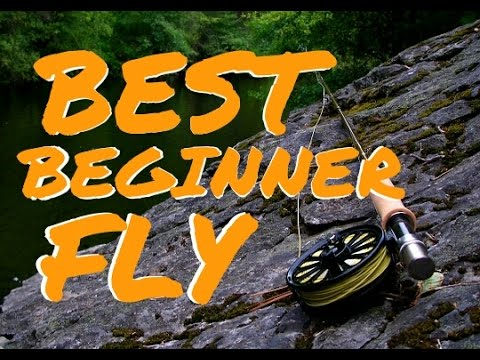 BEST Beginner Fly Fishing Rod Outfit