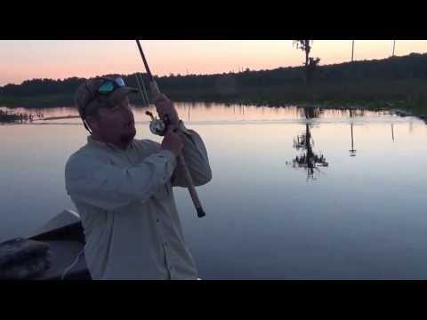 Sean Rush Shiner Fishing Tips