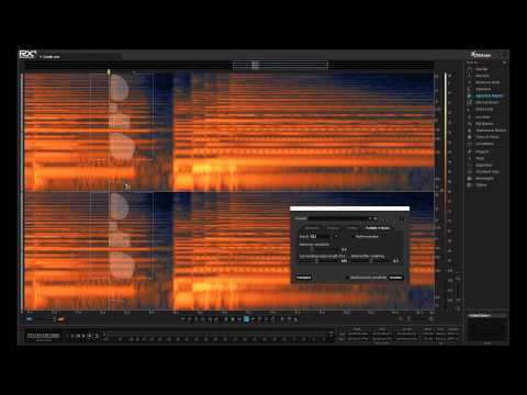 How to Remove Unwanted Sounds from a Take | iZotope RX