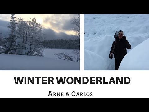 A tour of ARNE & CARLOS' winter wonderland