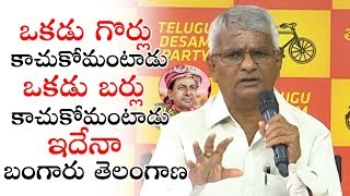 Raavula Chandrasekar Fires on KCR | TDP Bhavan Hyderabad | Political Qube
