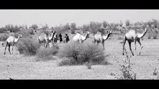 שמעון ולוי - עולים בסולם - קליפ | Shimon & Levi - Olim Basulam