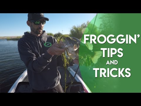 Frogging Tips and Tricks [Largemouth Bass Fishing]