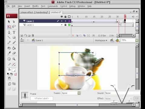 How to create Steam using Adobe Flash CS3