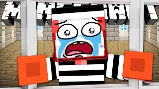 If You Could Go To Prison in Minecraft