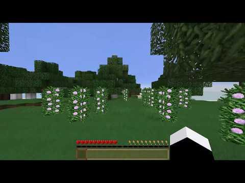 Speaker World - Part 1: Minecraft Let's Play