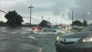 Download New Orleans flooding: 'Parts of Uptown are flooding that I've never seen flooded before' Video