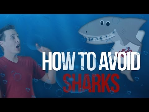 10 Ways to Avoid SHARKS!!!