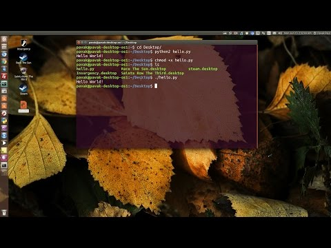 How to run Python scripts in Linux