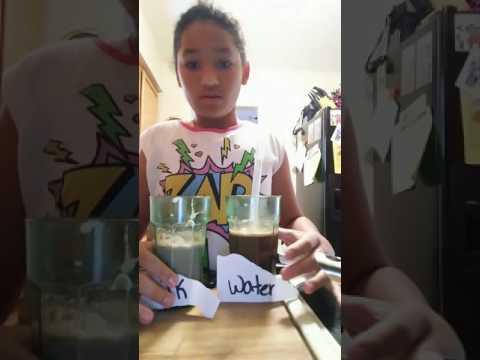HOT WATER COCOA VS HOT MILK COCOA