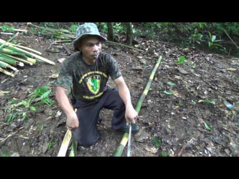 Constructing a Primitive Jungle Shelter