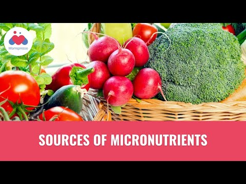 Sources of Micronutrients