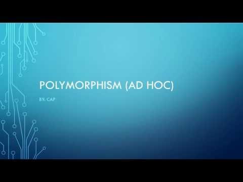 Beginner C++ tutorial 22 (ad hoc polymorphism concept)