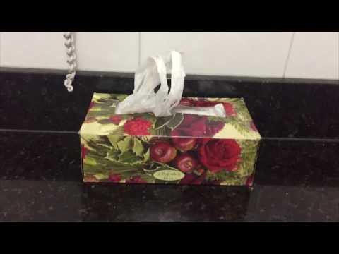 DIY Plastic/grocery bag holder/ Dispenser easy and organize you kitchen | Recycle tissue box