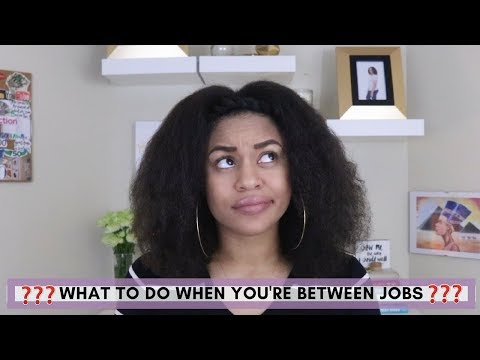 What To Do When You're Between Jobs   Secret Life of E